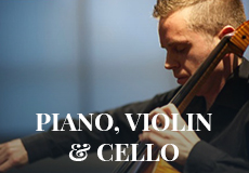 Piano, Violin, Cello - Wedding Singer.ie