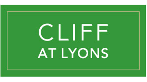 Wedding Venue - Cliff at Lyons - Wedding Singer.ie