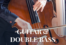 Guitar & Double Bass - Wedding Singer.ie