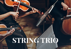 String Trio - Wedding Singer.ie